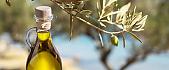 SUPER EARLY BIRD FIRENCE TOSKANA Z GOHOLIDAYS OKTOBERSKE POČITNICE slika1#glavna1